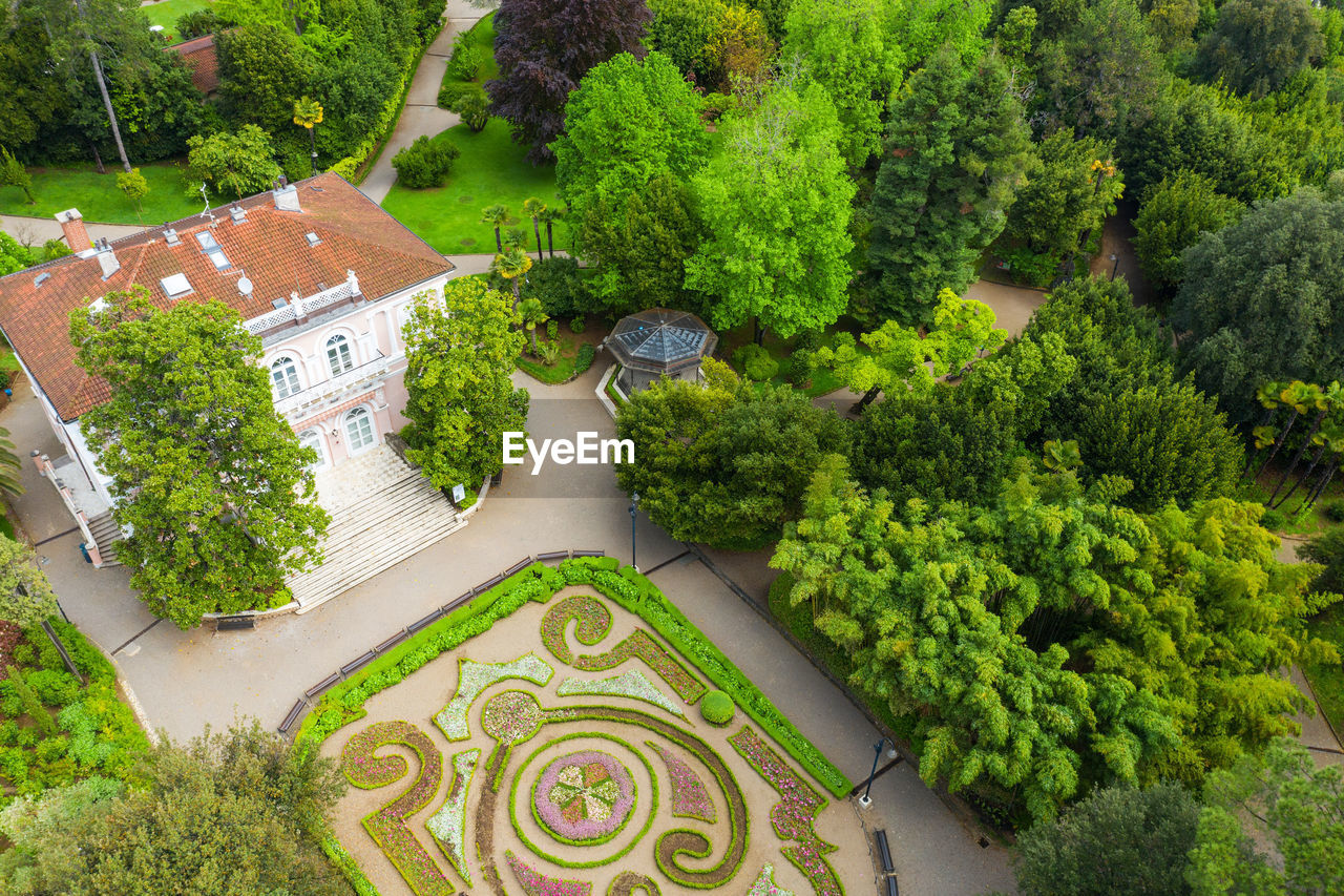 HIGH ANGLE VIEW OF TREES BY PLANTS IN GARDEN
