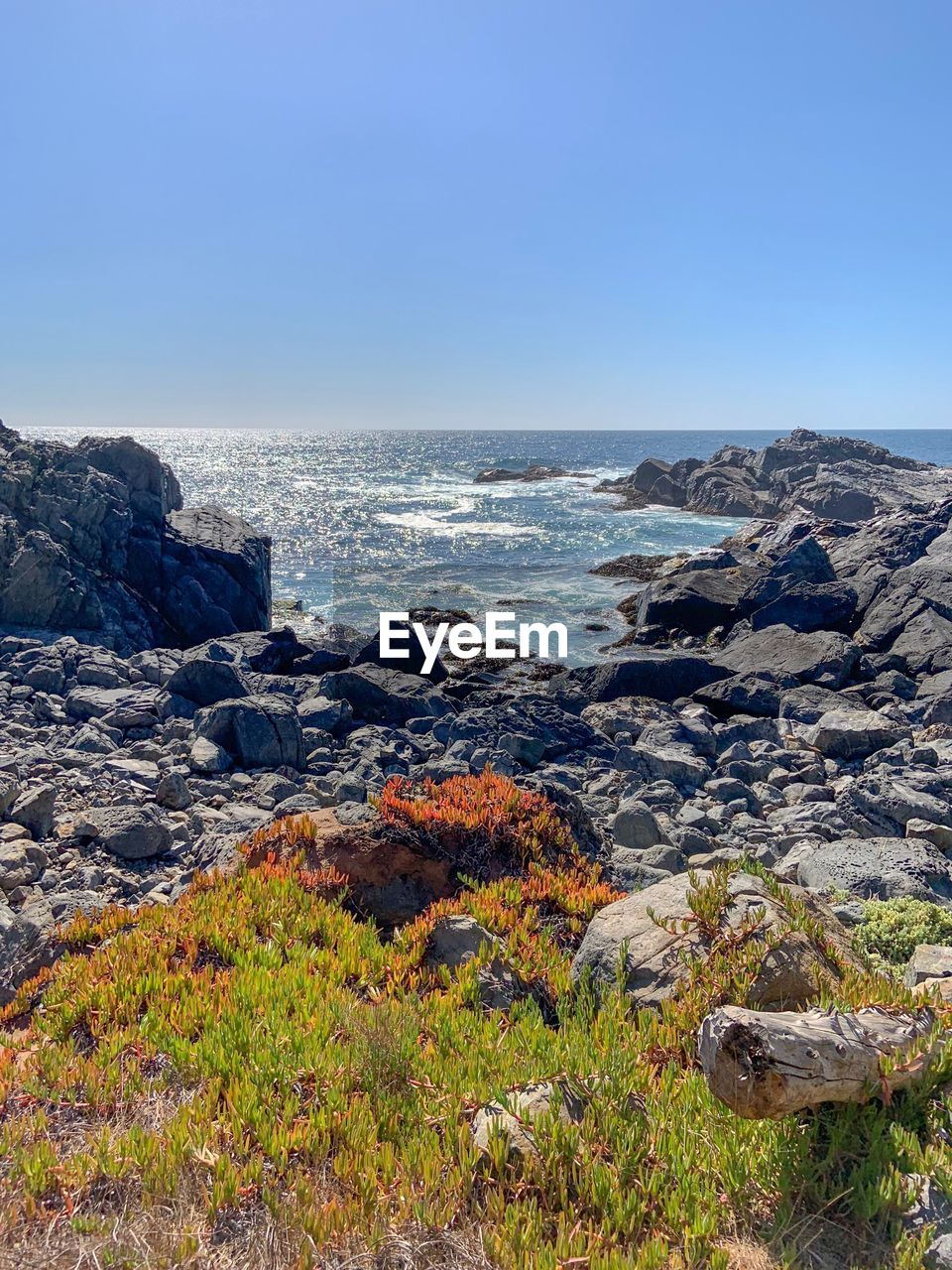 sea, sky, water, beauty in nature, scenics - nature, clear sky, land, rock, nature, rock - object, horizon, day, solid, horizon over water, no people, plant, copy space, beach, wave, outdoors, power in nature, rocky coastline