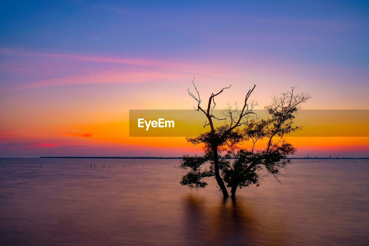 sunset, sky, scenics - nature, water, beauty in nature, tranquility, tranquil scene, orange color, sea, horizon, horizon over water, idyllic, waterfront, nature, non-urban scene, cloud - sky, no people, tree, reflection, outdoors, romantic sky