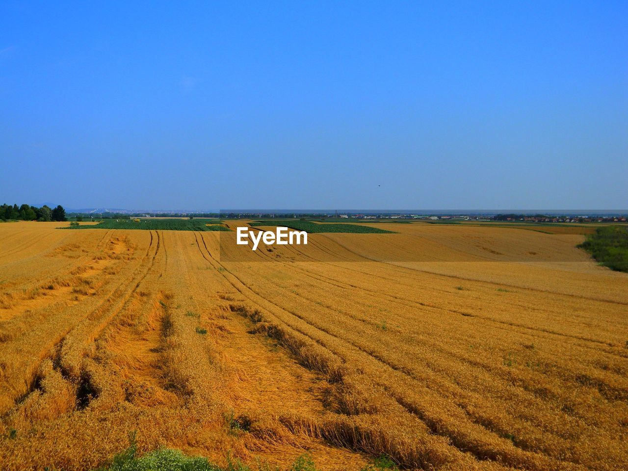 landscape, environment, sky, land, tranquil scene, field, scenics - nature, beauty in nature, tranquility, copy space, nature, no people, blue, plant, day, clear sky, rural scene, agriculture, horizon over land, non-urban scene, outdoors