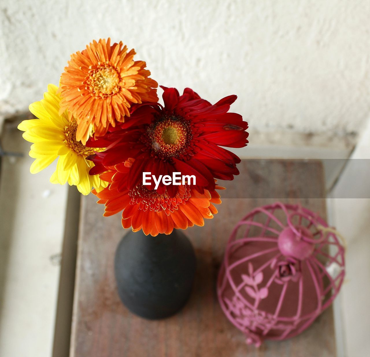 flower, flowering plant, freshness, vulnerability, fragility, petal, close-up, beauty in nature, plant, flower head, inflorescence, vase, no people, indoors, nature, growth, decoration, focus on foreground, red, gerbera daisy, pollen, flower arrangement