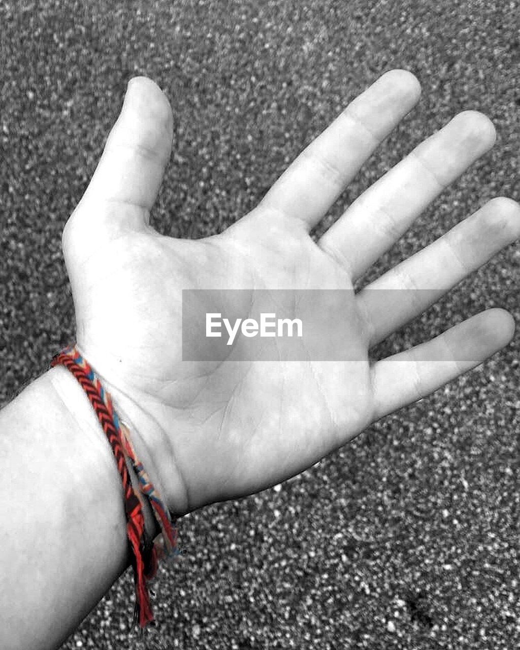 human hand, real people, human body part, one person, human finger, day, gesturing, lifestyles, high angle view, outdoors, leisure activity, close-up, palm, men, people