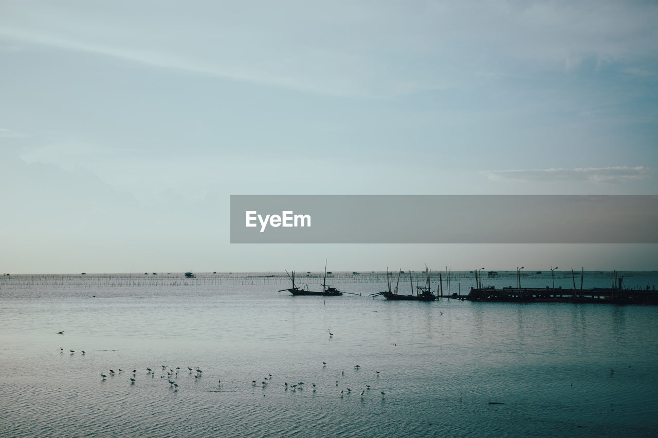 water, sea, sky, transportation, scenics - nature, beauty in nature, nautical vessel, nature, mode of transportation, waterfront, horizon, cloud - sky, tranquil scene, tranquility, no people, horizon over water, day, bird, outdoors