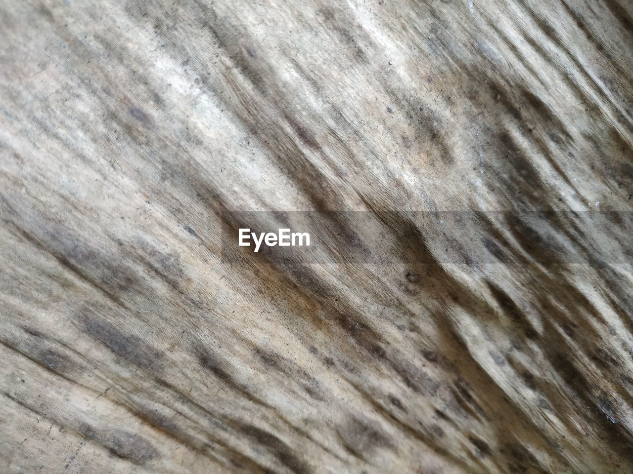 backgrounds, full frame, pattern, textured, no people, close-up, solid, rock, extreme close-up, abstract, marble, nature, rock - object, wood - material, wood, abstract backgrounds, gray, brown, wood grain, outdoors, textured effect, silver colored
