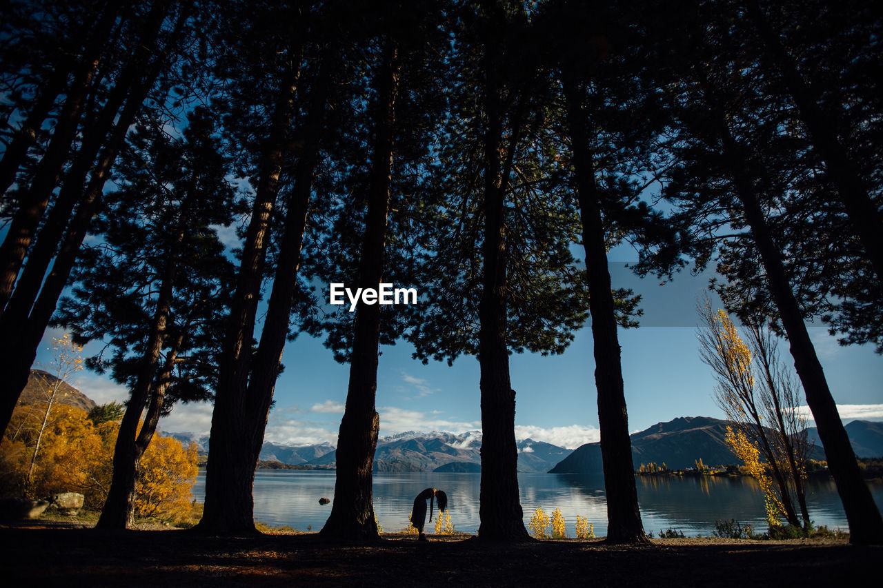 Woman Standing Between Trees By Lake Against Mountains