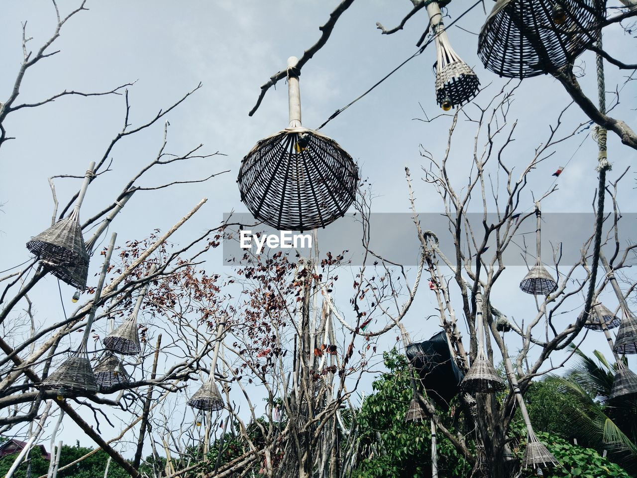 tree, plant, hanging, low angle view, branch, day, no people, sky, nature, bare tree, outdoors, decoration, wind chime, focus on foreground, lighting equipment, built structure, architecture, beauty in nature, roof