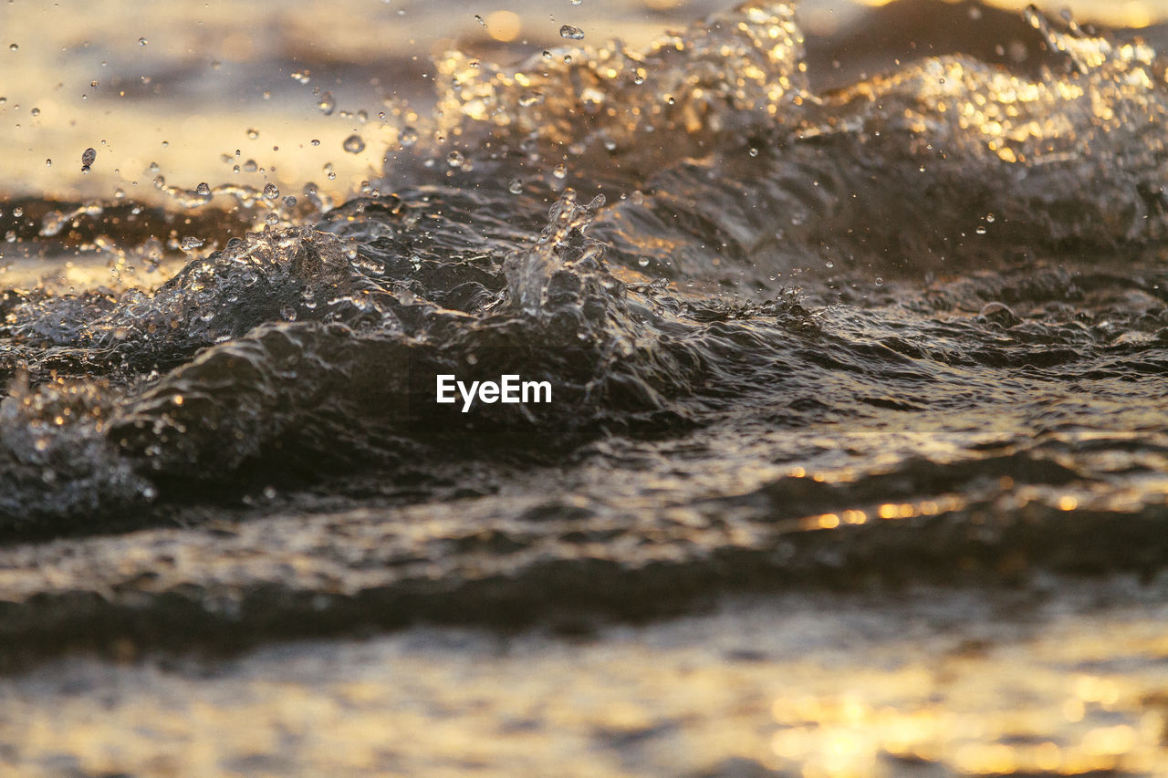 water, no people, nature, waterfront, outdoors, close-up, drop, beauty in nature, sea, day, animal themes