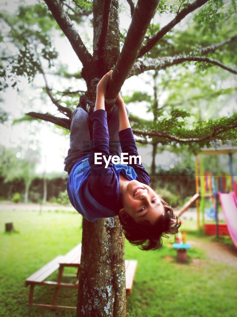 Portrait Of Smiling Playful Boy Hanging From Branch At Playground
