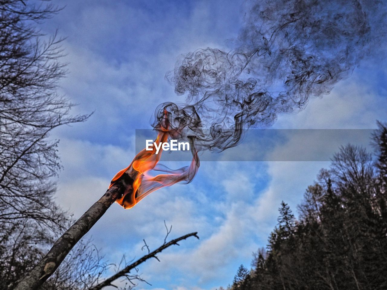 tree, low angle view, sky, cloud - sky, nature, day, plant, bare tree, outdoors, branch, no people, motion, environment, orange color, flying, wind, fire, burning, smoke - physical structure, fire - natural phenomenon