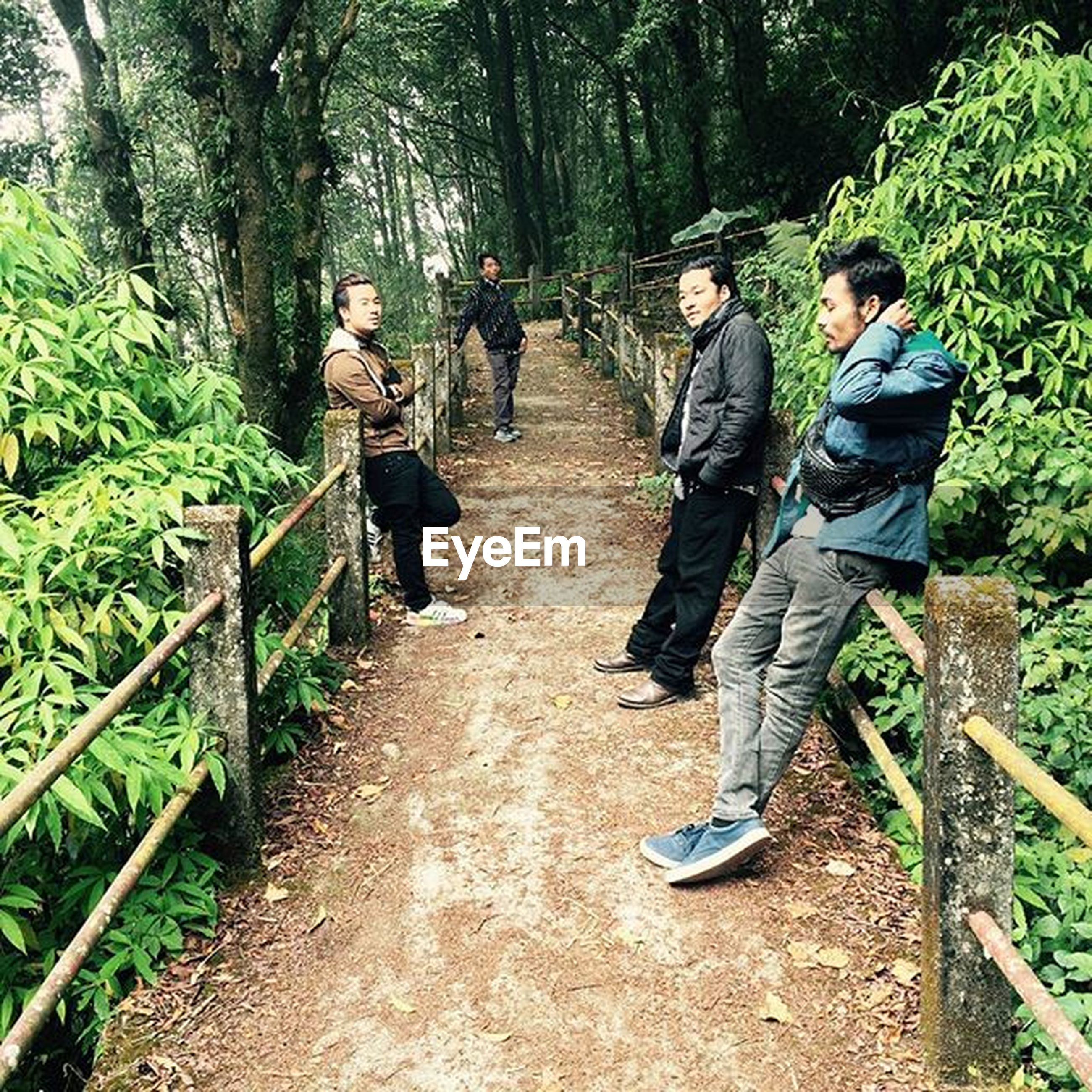 lifestyles, tree, full length, leisure activity, men, the way forward, casual clothing, rear view, growth, green color, walking, plant, forest, nature, person, togetherness, footpath