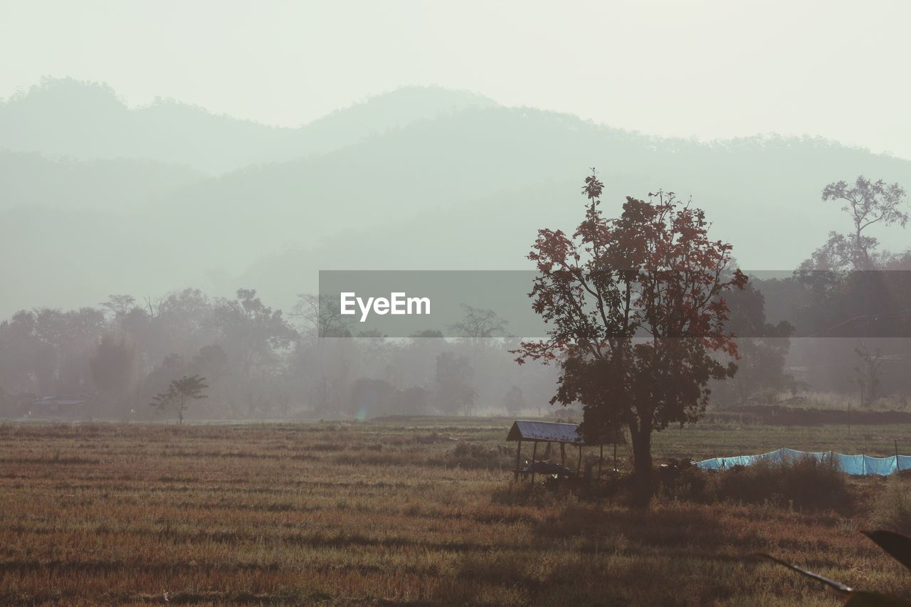Scenic View Of Landscape By Mountains In Foggy Weather