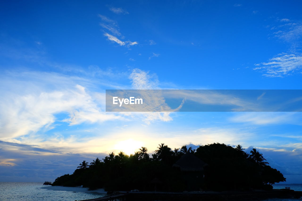 sky, sea, blue, horizon over water, beauty in nature, nature, tranquil scene, silhouette, scenics, tranquility, cloud - sky, outdoors, water, no people, sunset, beach, day, tree