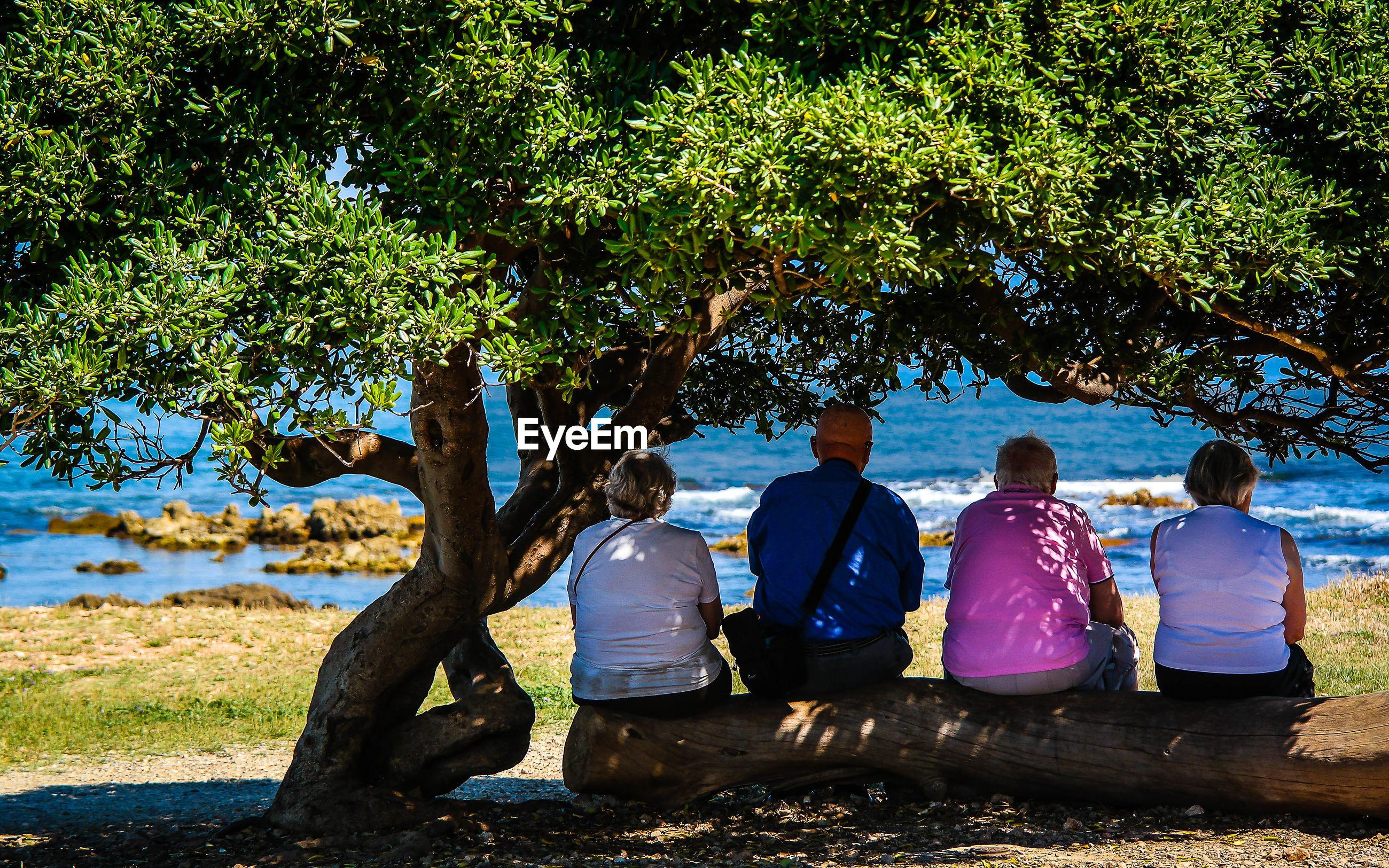 Rear view of people sitting on fallen tree trunk by sea