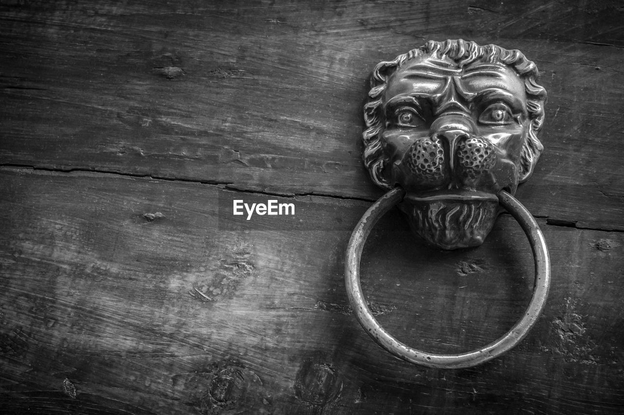 Close-Up Of Antique Lion Head Door Knocker