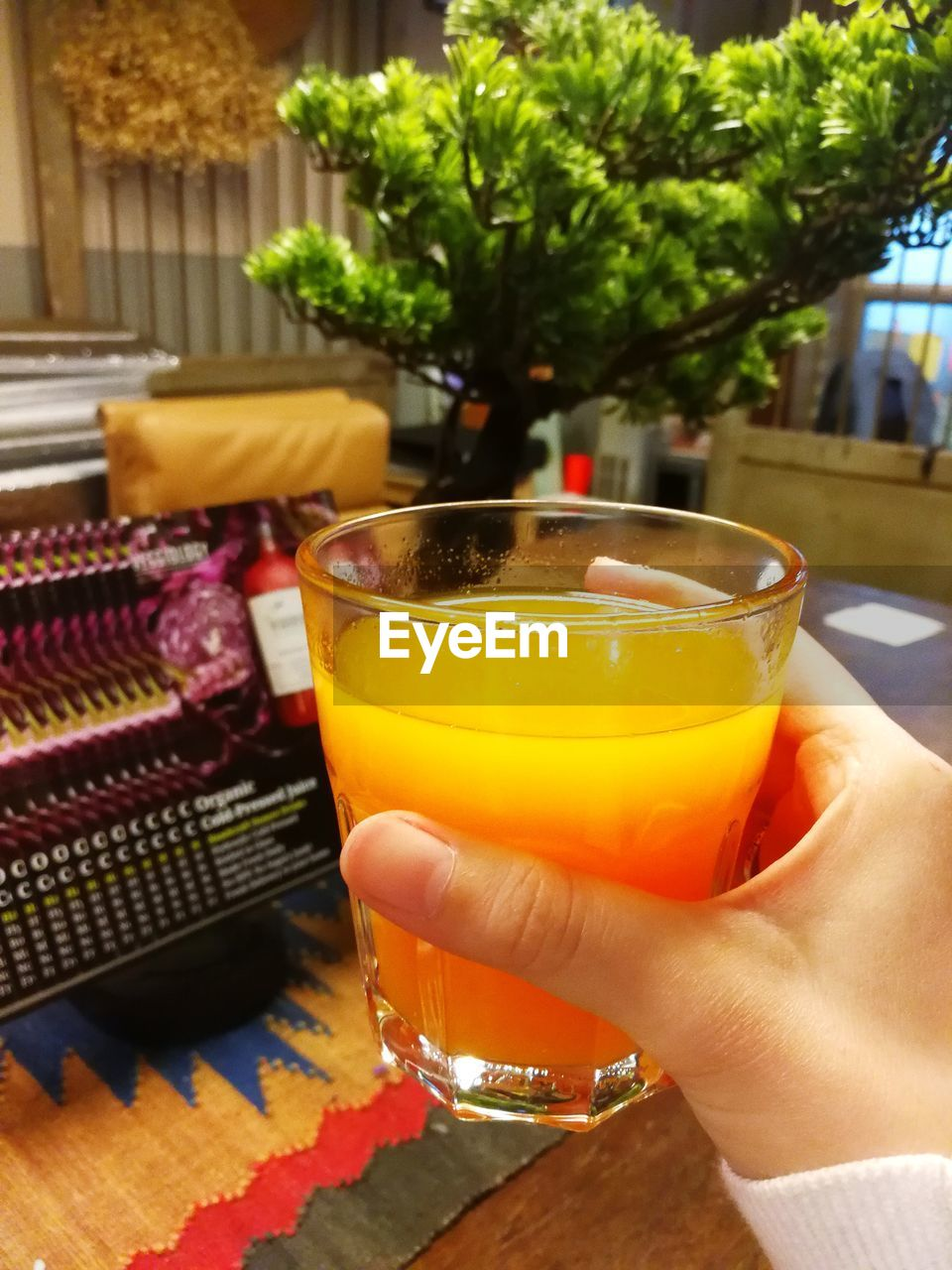 human hand, human body part, real people, food and drink, human finger, one person, drink, holding, lifestyles, focus on foreground, close-up, drinking glass, refreshment, indoors, freshness, food, day, alcohol, nail polish, people