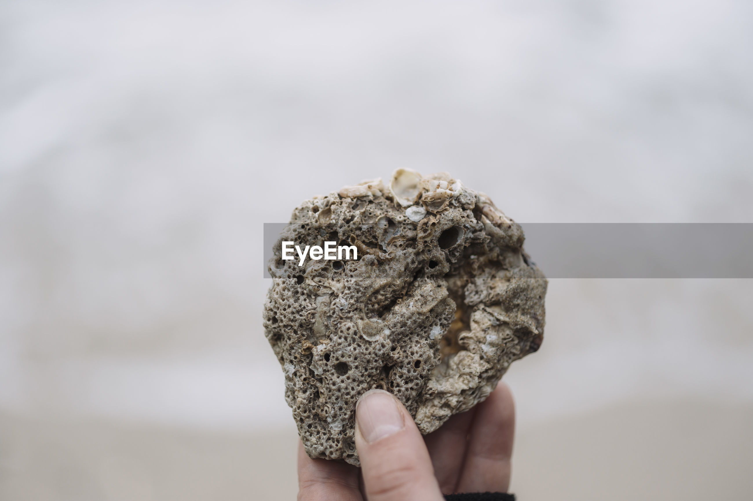 Cropped image of hand holding stone at beach