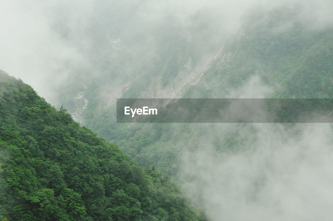 mountain, nature, fog, no people, day, landscape, beauty in nature, scenics, outdoors, freshness