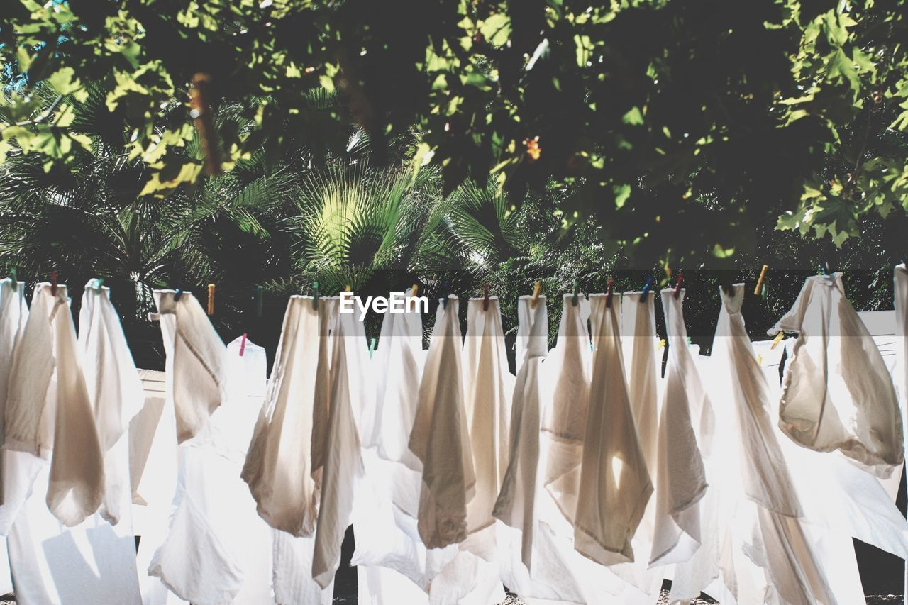 Clothes Drying On Ropes