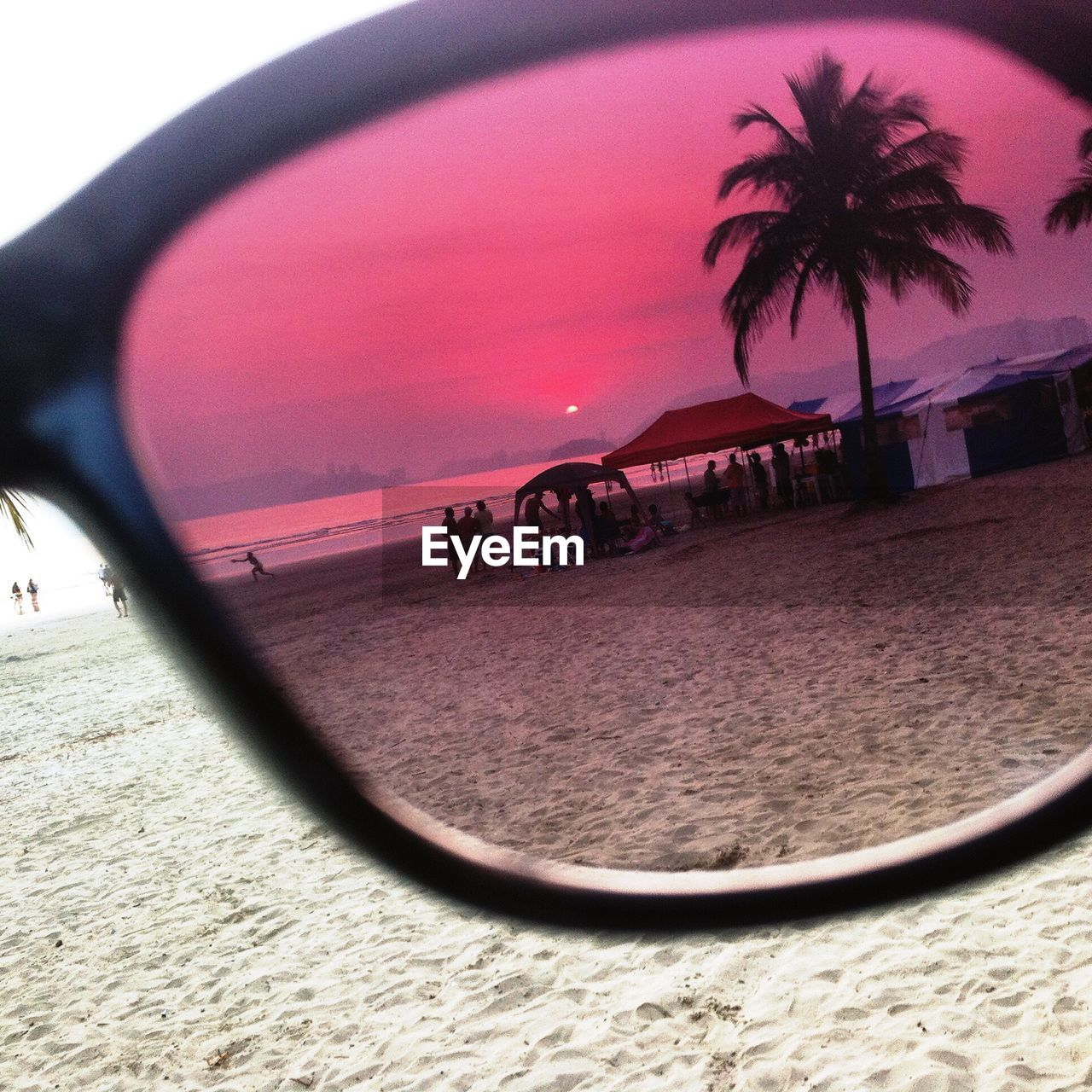 beach, palm tree, sand, sunset, sky, fish-eye lens, nature, outdoors, no people, day
