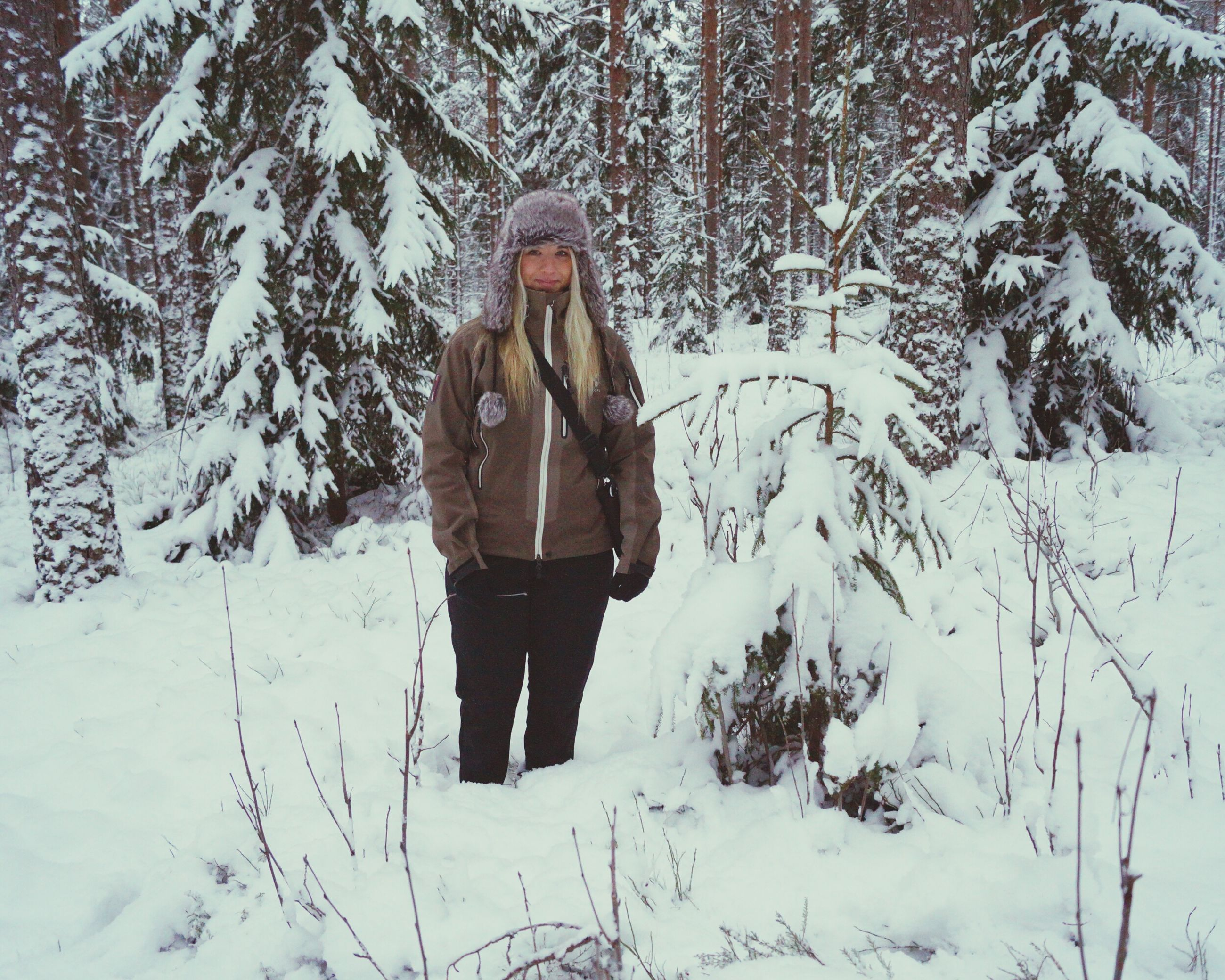 winter, snow, cold temperature, warm clothing, tree, weather, one person, one man only, outdoors, mature adult, day, nature, lifestyles, leisure activity, one mature man only, standing, people, adults only, snowing, only men, men, beauty in nature, adult