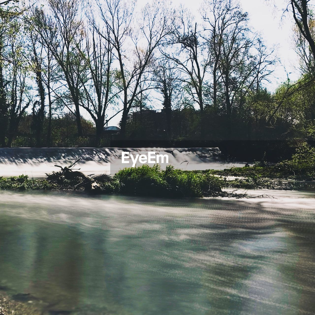 tree, plant, water, no people, day, nature, bare tree, architecture, beauty in nature, outdoors, scenics - nature, waterfront, tranquility, built structure, sky, growth, river, motion, flowing water, flowing