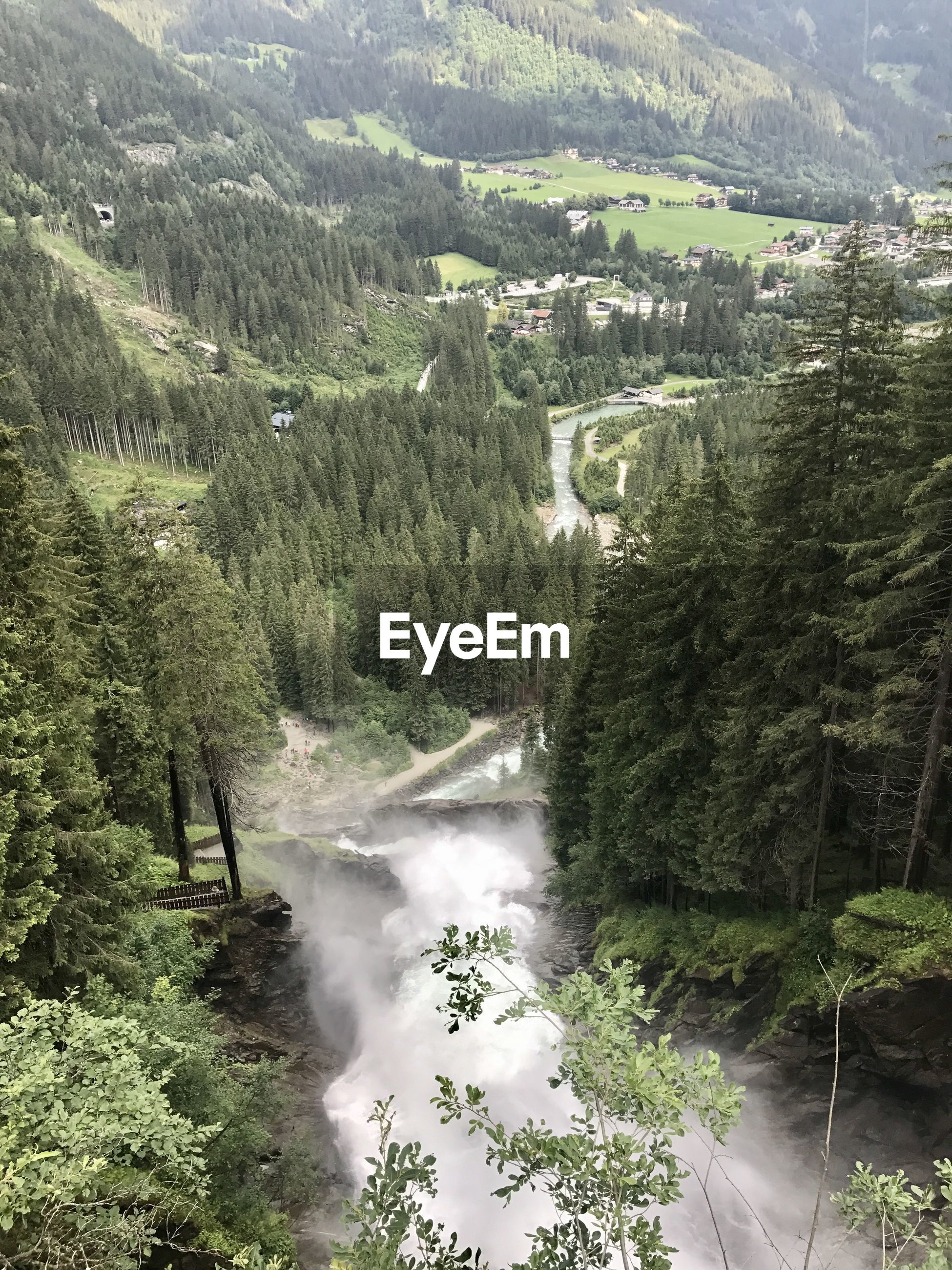 SCENIC VIEW OF RIVER AMIDST TREES AND FOREST