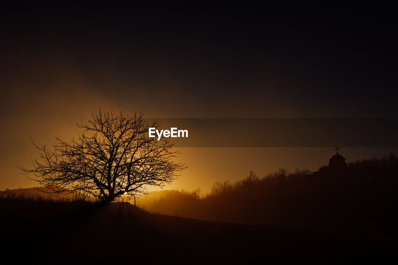 bare tree, tranquility, tranquil scene, silhouette, scenics, tree, beauty in nature, majestic, landscape, sunset, nature, solitude, lone, non-urban scene, remote, outdoors, horizon over land, branch, sky, tree trunk, no people, day