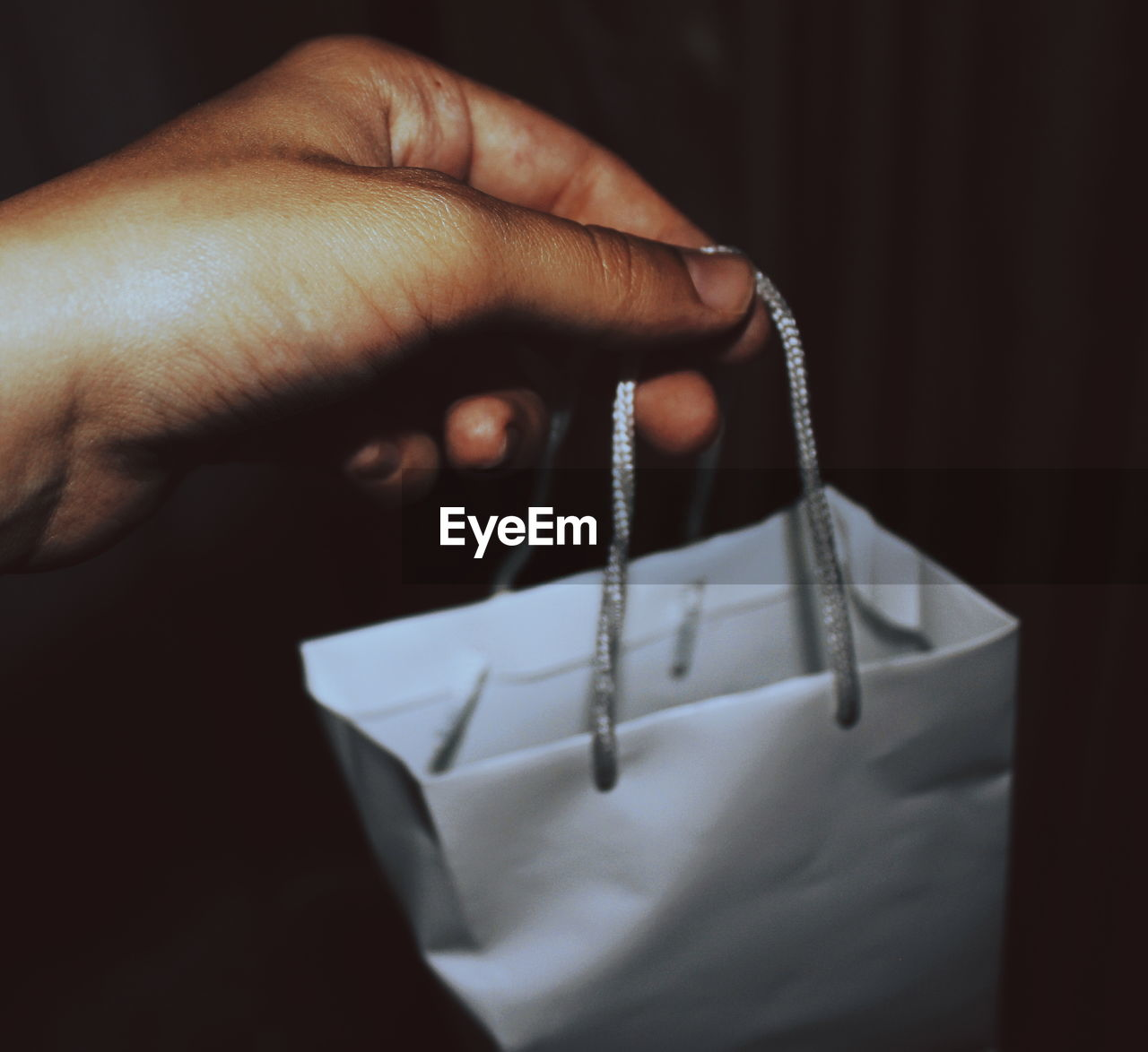 Close-up of person holding shopping bag