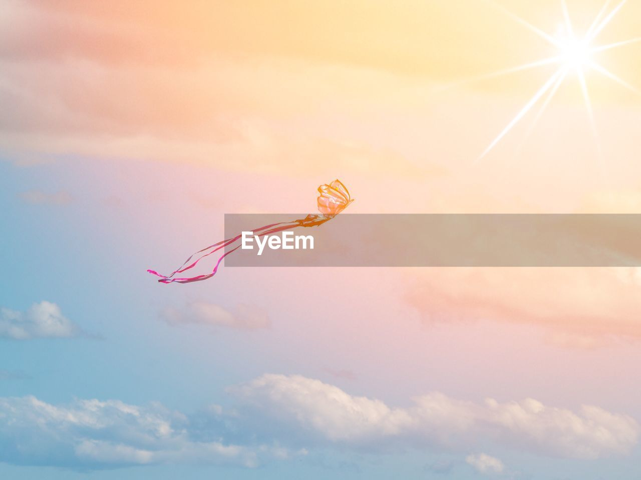 sky, beauty in nature, cloud - sky, nature, mid-air, no people, animal, sunset, flying, animal themes, orange color, tranquility, animal wildlife, scenics - nature, low angle view, outdoors, animals in the wild, day, tranquil scene, one animal