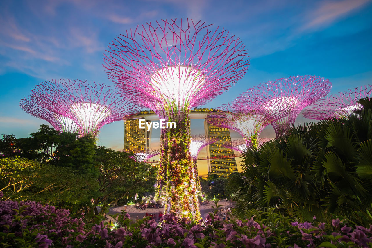 plant, sky, illuminated, nature, architecture, flower, cloud - sky, flowering plant, pink color, no people, tree, building exterior, beauty in nature, built structure, growth, outdoors, multi colored, city, park, arts culture and entertainment, purple