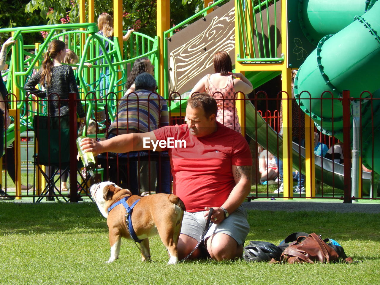 dog, mammal, pets, one animal, real people, leisure activity, domestic animals, grass, outdoors, day, lifestyles, playing, full length, friendship, men, architecture, tree, young adult, people