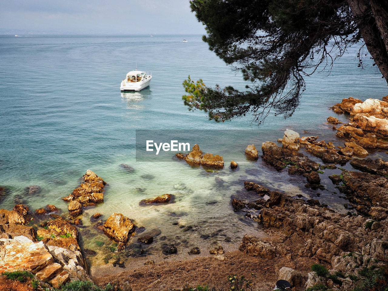 water, sea, rock, rock - object, solid, nature, no people, day, beauty in nature, beach, tranquility, land, scenics - nature, tranquil scene, tree, plant, non-urban scene, rock formation, outdoors
