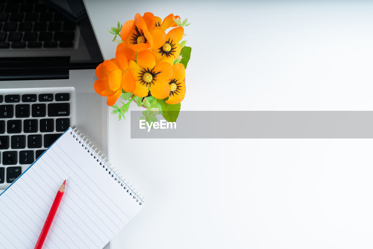 flowering plant, flower, copy space, freshness, flower head, indoors, plant, inflorescence, no people, wireless technology, petal, table, fragility, beauty in nature, nature, close-up, technology, computer, yellow, vulnerability, keyboard