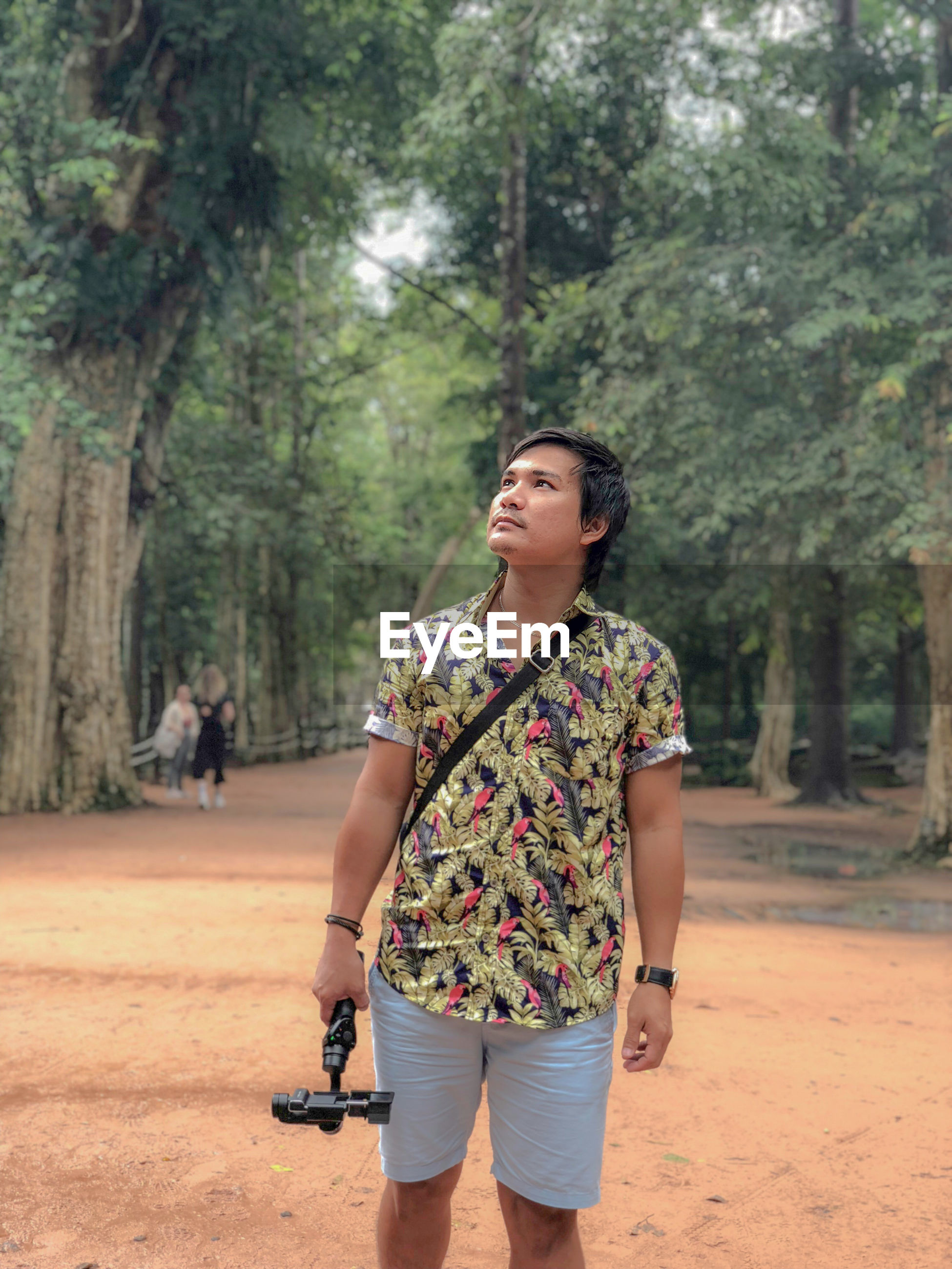 Man looking up while holding tripod in forest