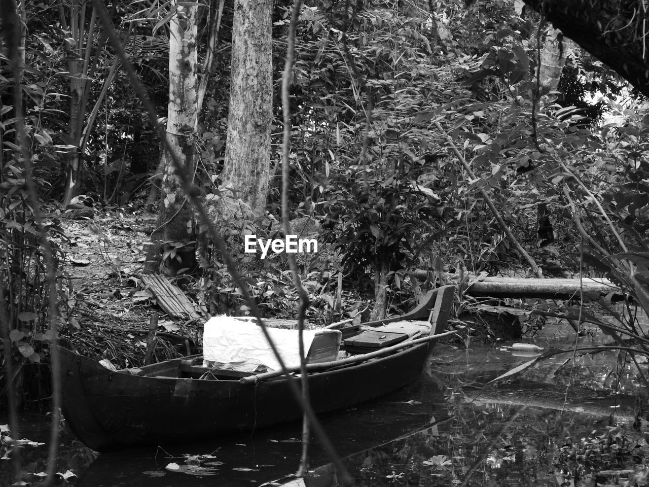 nautical vessel, outdoors, day, nature, rowboat, transportation, tree, water, forest, plant, growth, no people, beauty in nature, gondola - traditional boat