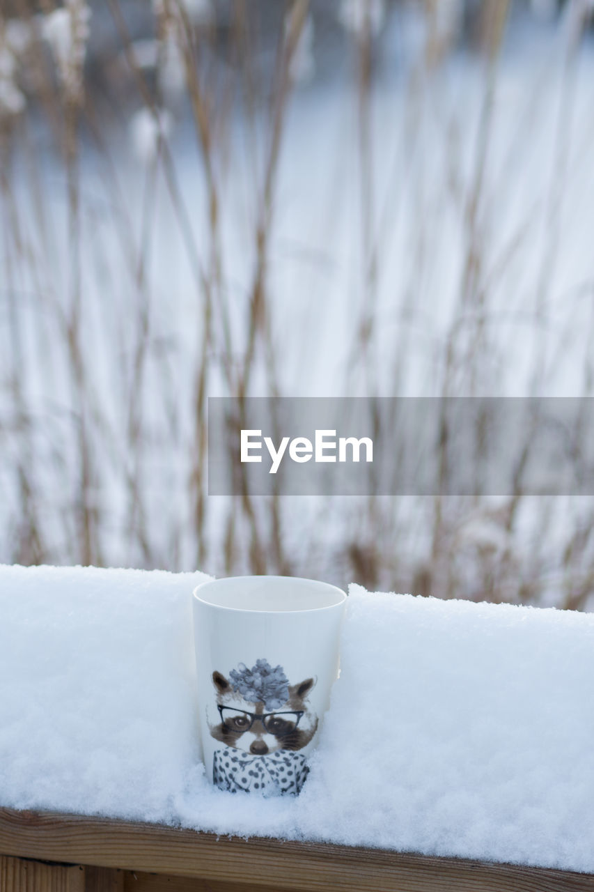 snow, winter, cold temperature, no people, white color, focus on foreground, frozen, mammal, day, nature, covering, tree, beauty in nature, animal themes, close-up, animal, one animal, plant, field