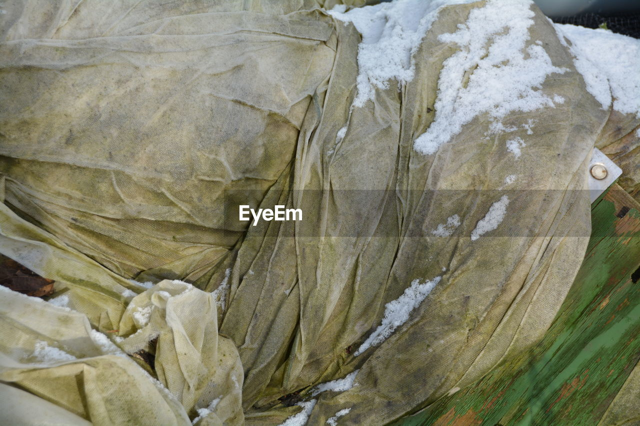nature, no people, outdoors, close-up, day, glacial