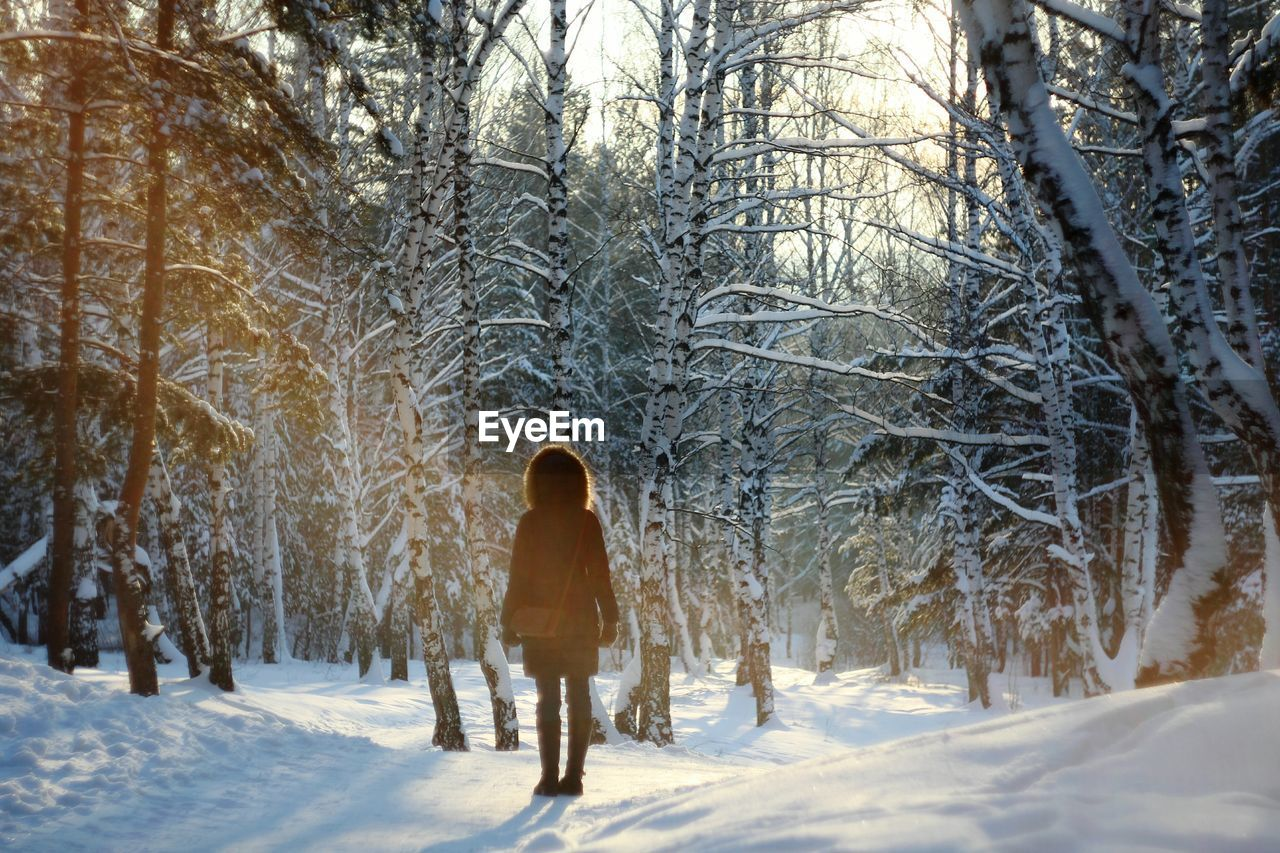 Rear View Of Woman Walking In Snow Covered Forest