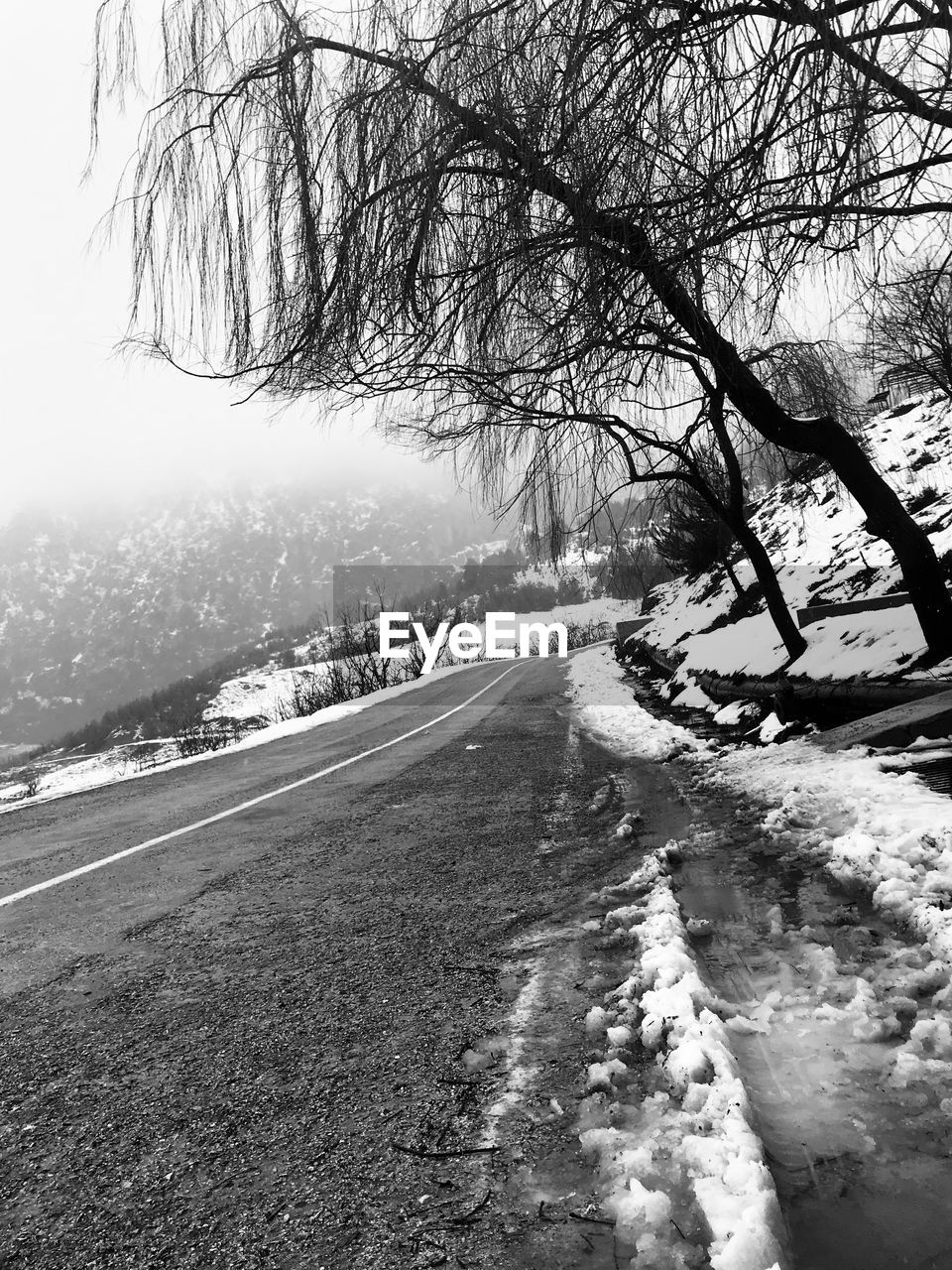 winter, snow, road, cold temperature, tree, bare tree, the way forward, nature, day, weather, outdoors, no people, tranquil scene, tranquility, scenics, landscape, beauty in nature, branch, sky