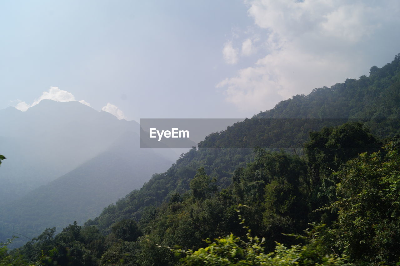 mountain, tree, nature, beauty in nature, scenics, tranquility, day, no people, tranquil scene, idyllic, sky, outdoors, landscape, forest, mountain range, scenery, growth