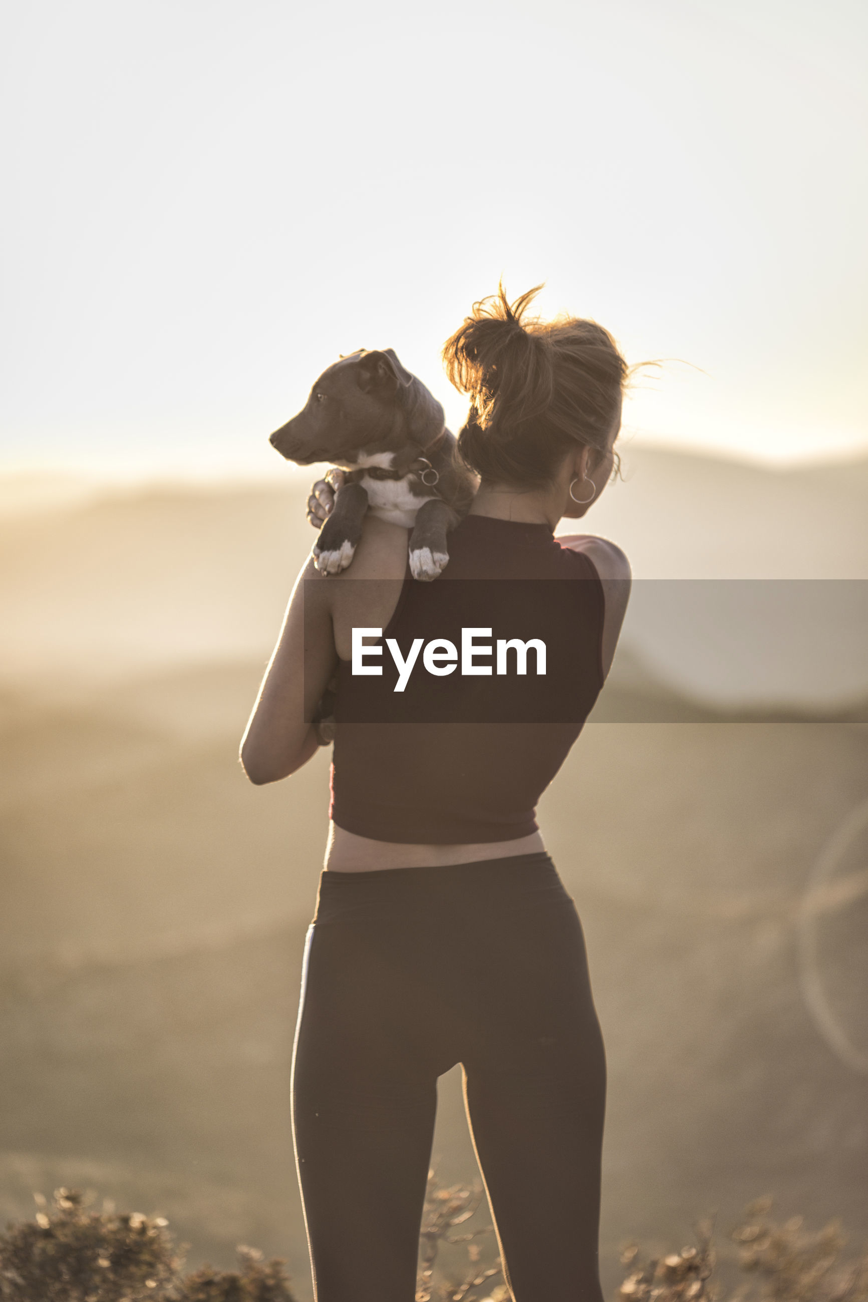 Rear view of woman carrying dog while standing against sky during sunny day