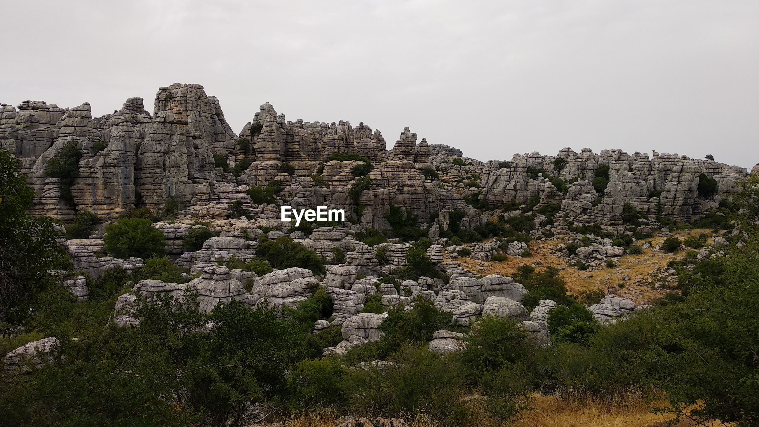 View of rocks and trees on landscape against clear sky
