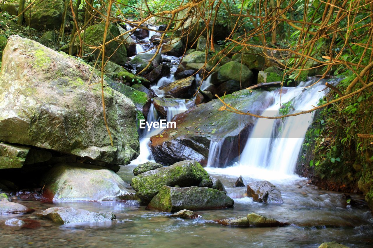 waterfall, water, river, nature, motion, rock - object, beauty in nature, no people, scenics, forest, tranquility, outdoors, day, tree