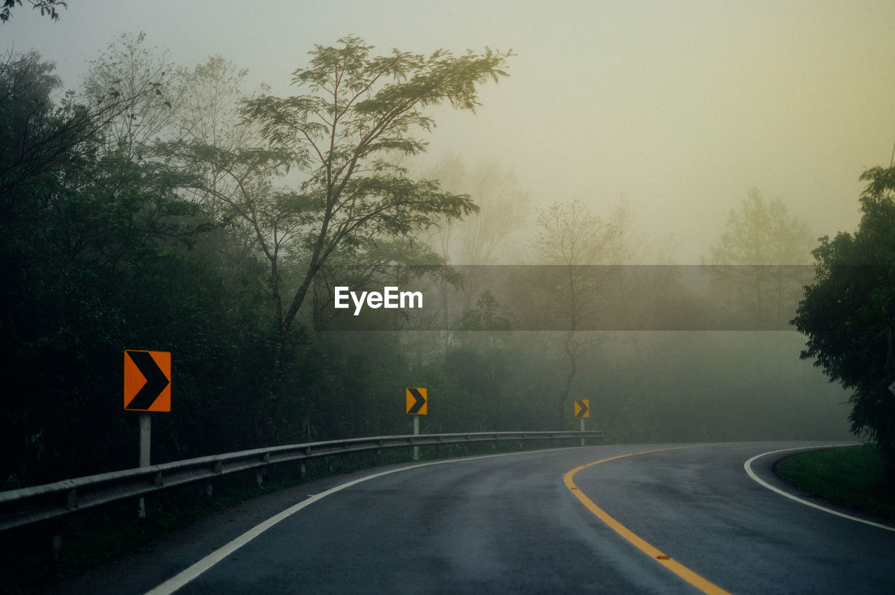 Arrow Symbols On Road Against Trees In Forest During Foggy Weather