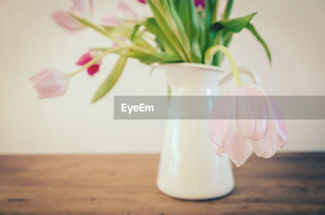 table, plant, vase, flower, flowering plant, freshness, no people, close-up, indoors, beauty in nature, petal, nature, glass - material, fragility, still life, vulnerability, focus on foreground, container, jar, pink color, flower head, flower arrangement, pitcher - jug