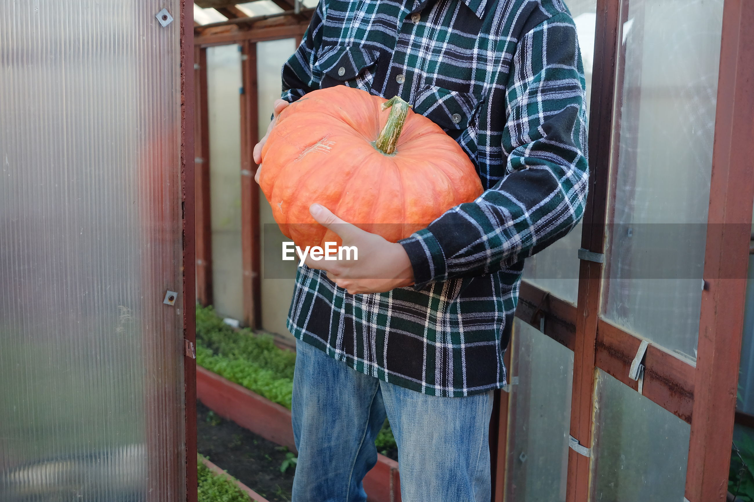 MIDSECTION OF MAN HOLDING PUMPKIN WHILE STANDING BY METAL