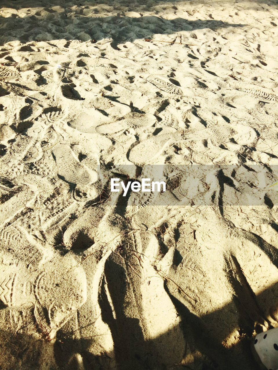 sand, beach, sunlight, nature, day, outdoors, no people, footprint, high angle view, shadow, water, sea, beauty in nature, close-up, animal themes