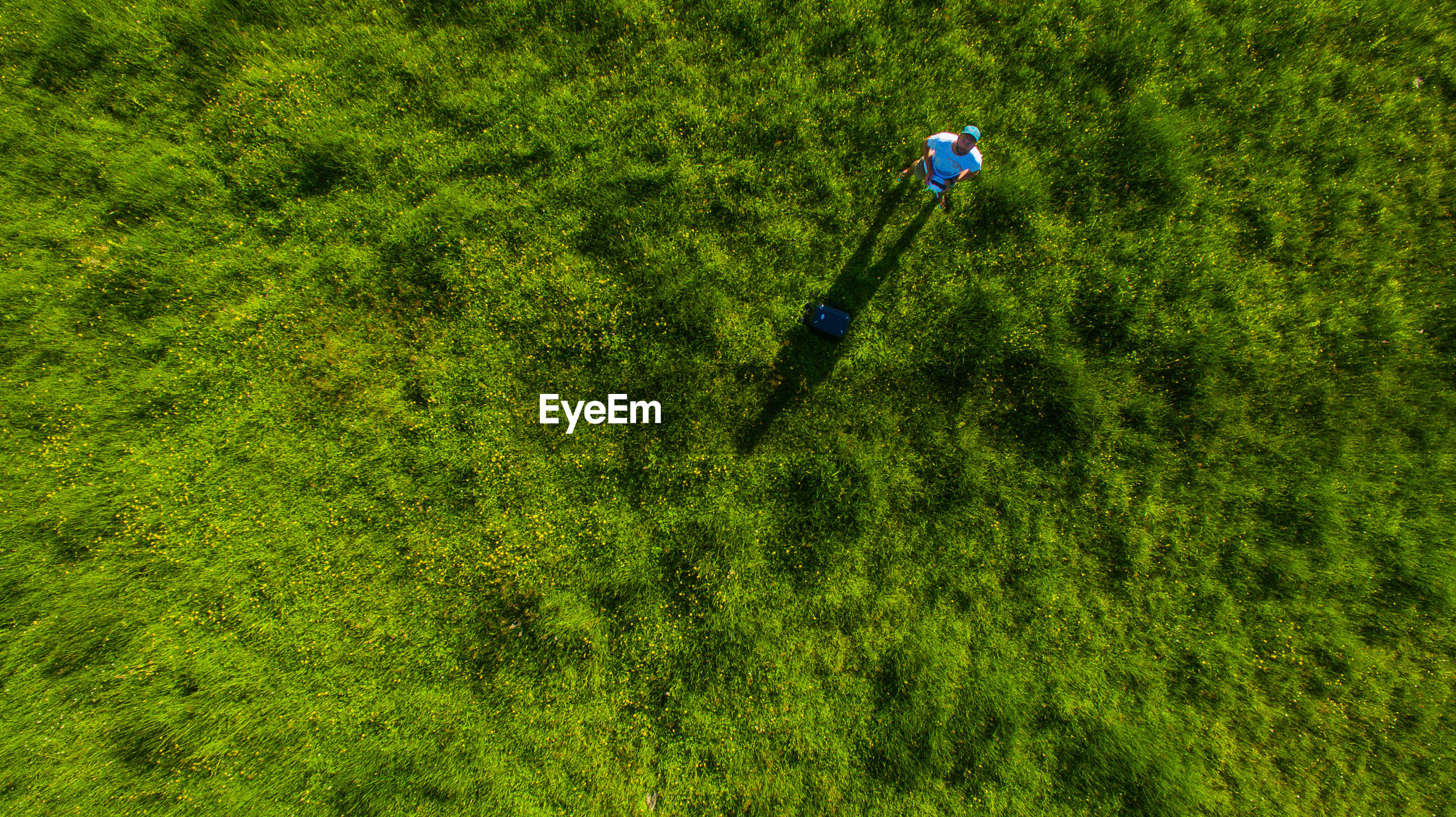 Directly above shot of man standing on grassy field