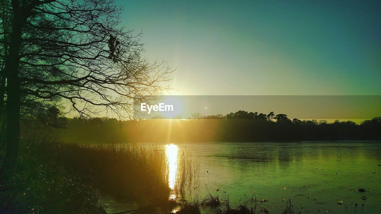 sky, water, tree, sun, beauty in nature, scenics - nature, tranquil scene, tranquility, sunset, sunlight, lake, plant, reflection, nature, lens flare, no people, sunbeam, silhouette, non-urban scene, outdoors, bright