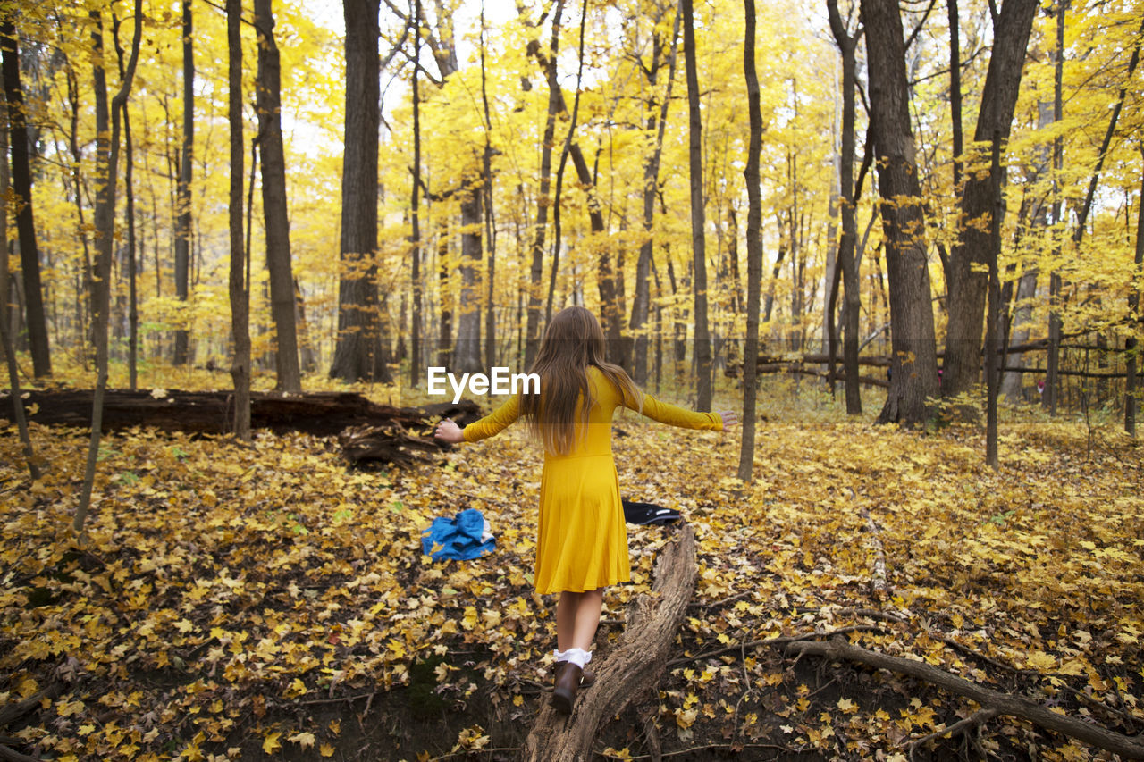 forest, tree, land, yellow, full length, plant, autumn, nature, hair, one person, adult, woodland, young adult, rear view, clothing, hairstyle, day, leisure activity, fashion, outdoors, change